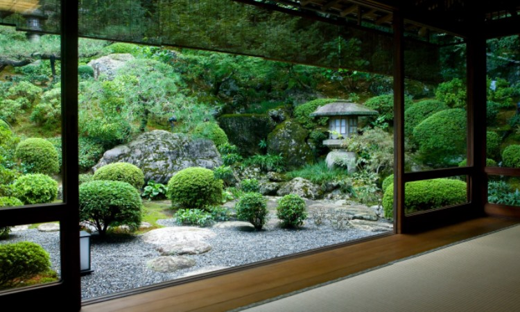 Japanese Garden Design and how to create a serene space