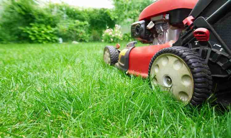 Lawn Mower Tires and How to Replace Them