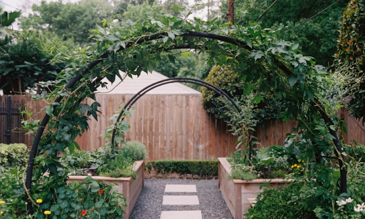 The Appeal of the Garden Arch